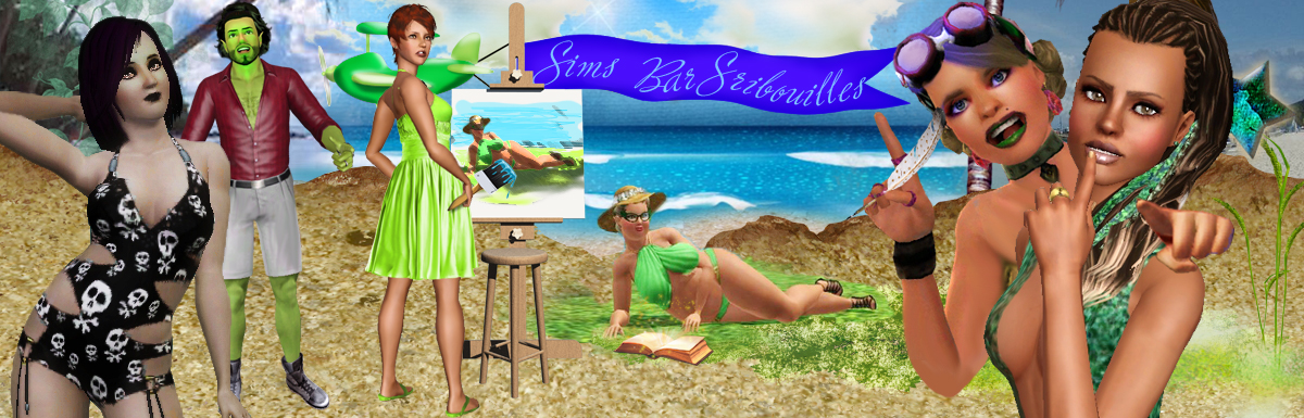 Le SBS: Sims BarScribouille