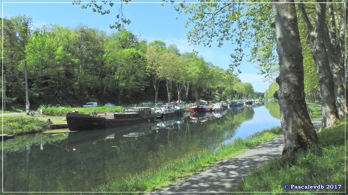 Printemps le long du canal latéral à la Garonne - Avril 2017 - 4/10