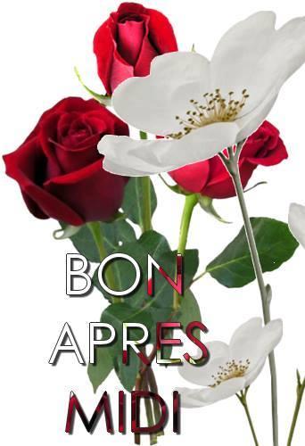 BON  APRES  -  MIDI