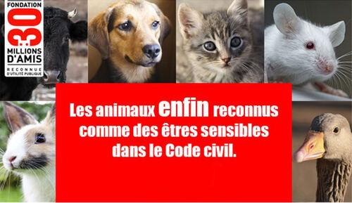 Le Code civil les reconnait Enfin !