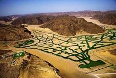 paradis qui sort des déserts Arabe chez les impostures islamique