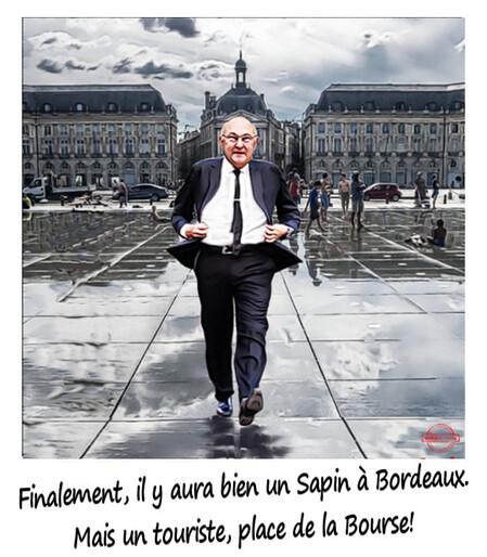 Sapin à Bordeaux