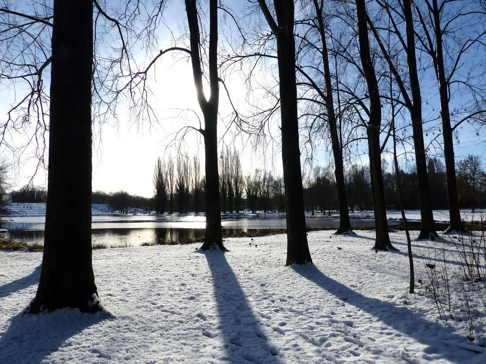 Amiens sous la neige (3)