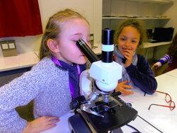Ateliers sciences au collège (2)