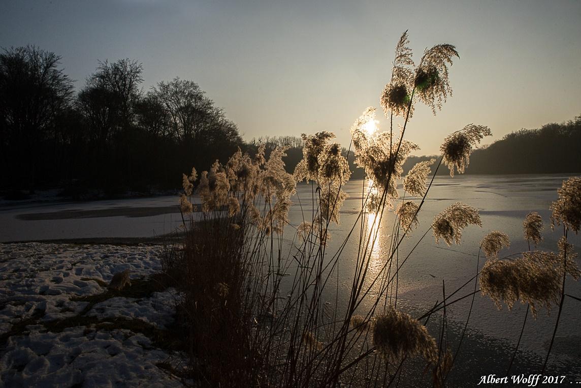Entre glace et soleil  - 1 -