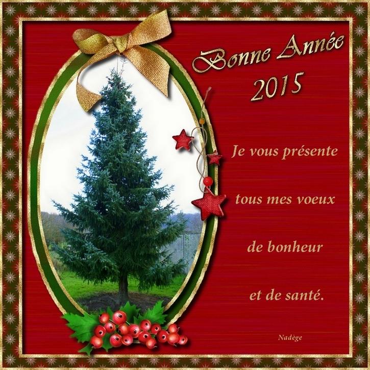 Pour l' An 2015 .....