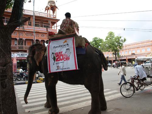Katmandou-Delhi : Un voyage au Tibet ? (Première partie)