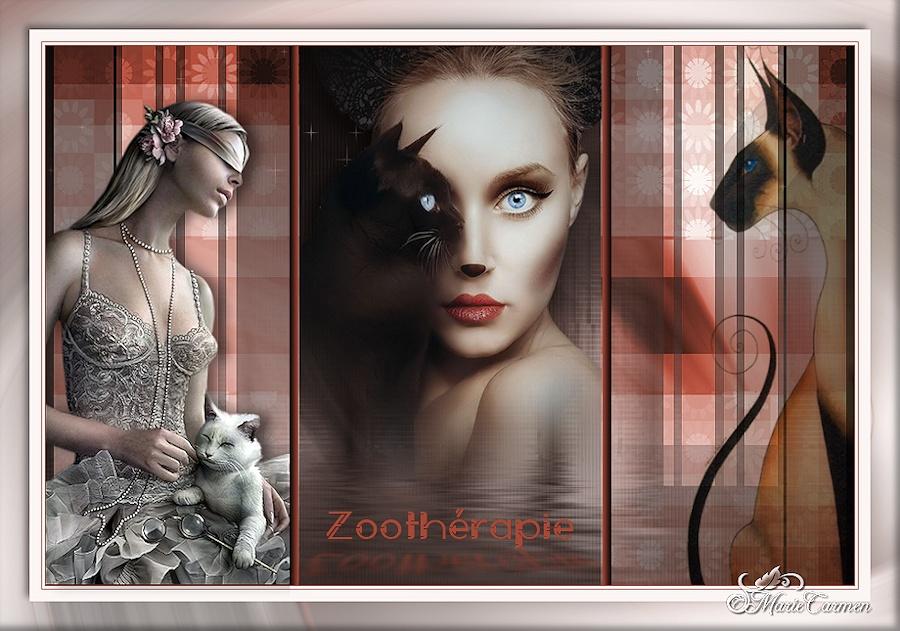 ♥ Zoothérapie - Bon mercredi ♥