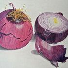Oignons  (vendu)