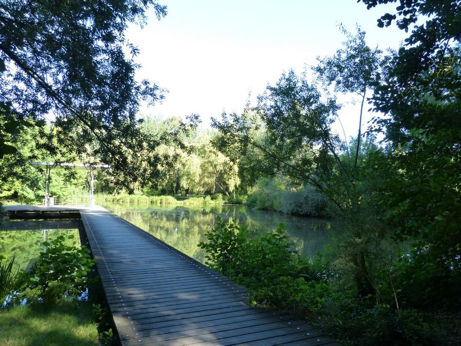 Le parc en fin d'été ...