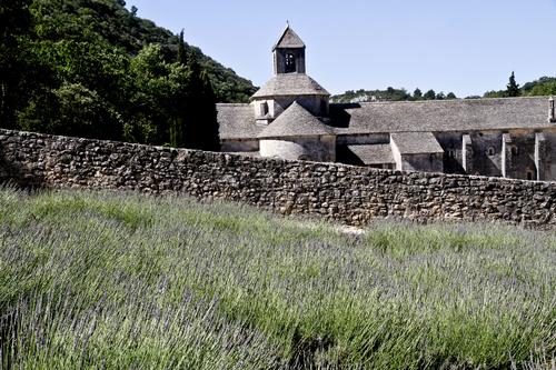 Abbaye de sénanque-1