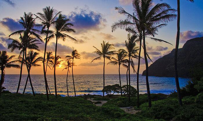 Visite De L'île D'Hawaï