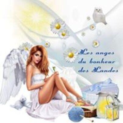 bienvenue sur l association les anges du bonheurs des landes