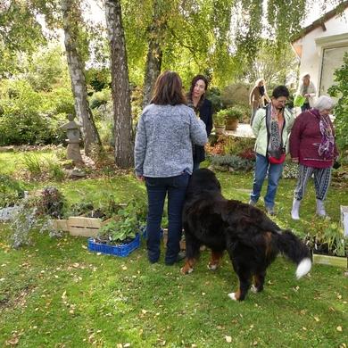 Troc plantes au jardin de Valérie...