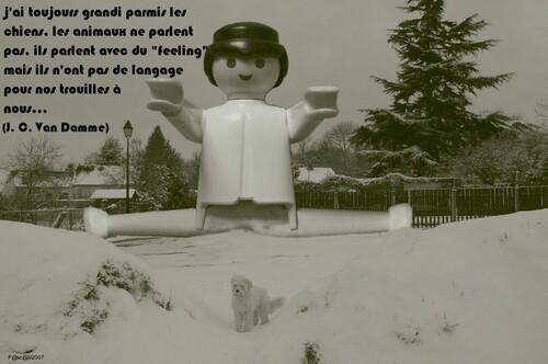Une pensée d'un karatéka Belge