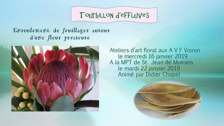 Tourbillons d'effluves