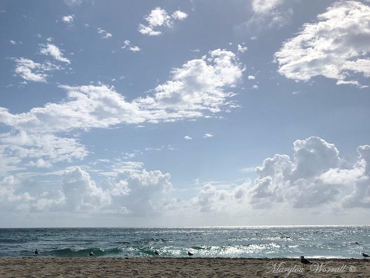Floride : Miami balade à vélo
