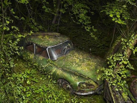 85297781_paradise-parking-peter-lippmann-05_xyo-700x525