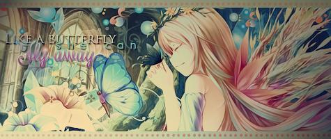 Kit butterfly