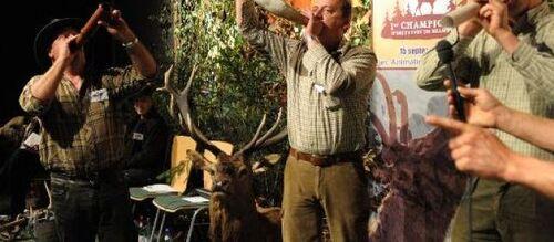 Un chasseur sachant bramer est un bon chasseur !