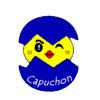 Capuchon Alécole