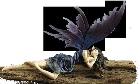 Fairy & Fantasy
