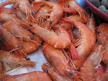 Crevettes au curry thai