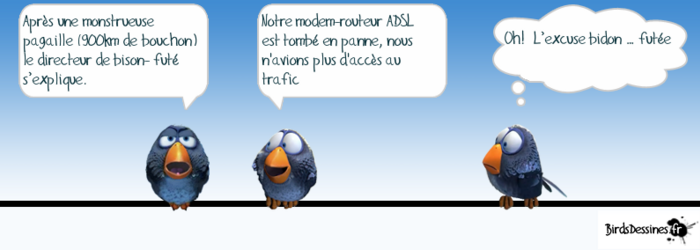 Les birds.... du samedi. 31)