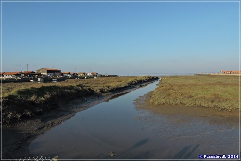 Entre le port de Gujan-Mestras et le port de Larros - 1/5