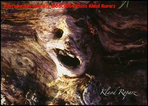 La page de Klaod Roparz