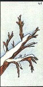 41 - l'hiver