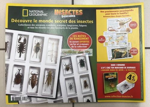 N° 1 Insectes & autres bestioles - Lancement