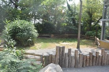 Zoo 2015 bis 357