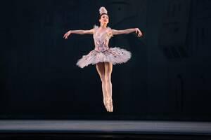 dance ballet harlequinade ballet