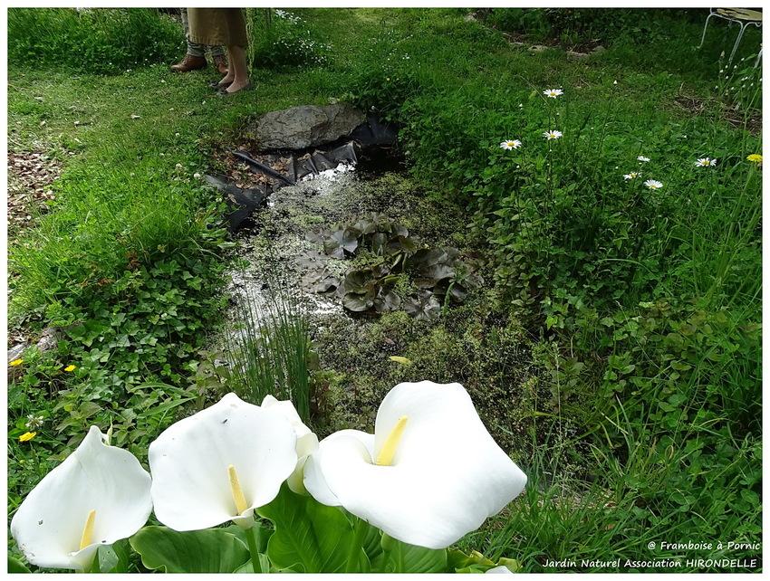 Pornic, Jardin Naturel d'Hirondelle - 2016