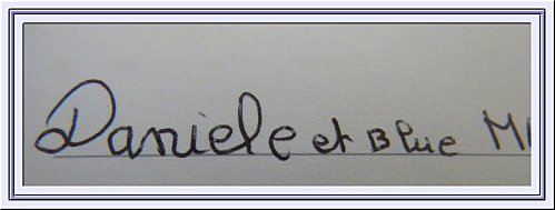 adresse coupée-blog-blog