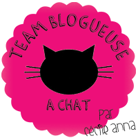 blogueuse a chat ^^