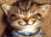 http://img11.hostingpics.net/thumbs/mini_210735challengechat.png