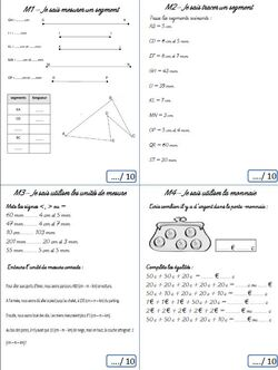 """Cahier des réussites CE2 """"Maths tout terrain"""""""