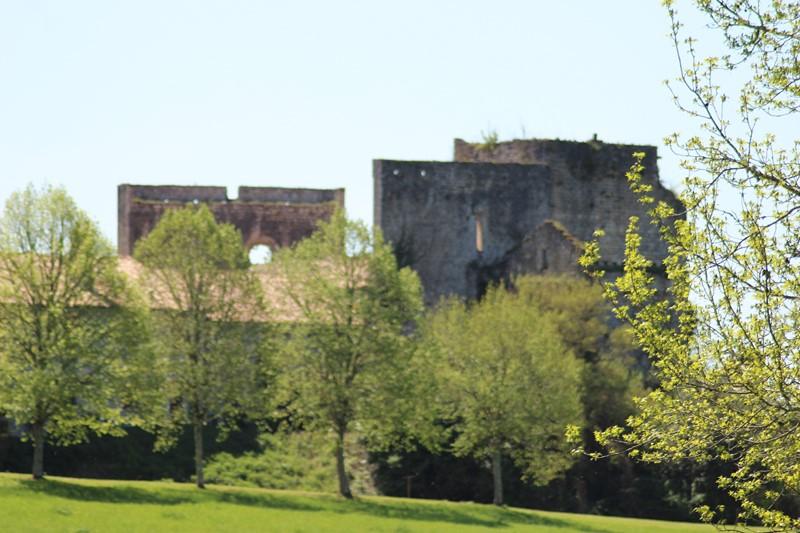 Le Château Vieux de Roquetaillade