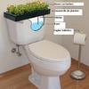 toilettes de jardin