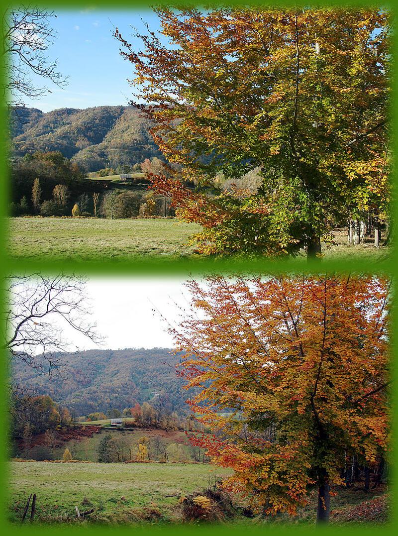 Paysages des Pyrénées (Année 2007)