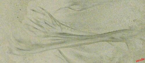 Tableaux éphémere sur le sable