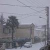 Février 2012 ma rue