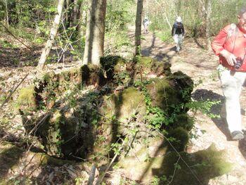 Reste de tronc en forme de fonts baptismaux