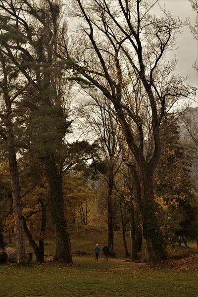 2016.11.13 L'automne 2