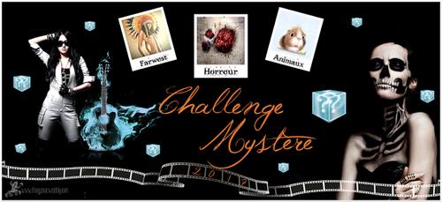 Le challenge mystère 2017