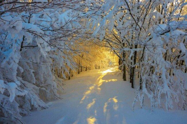 19 Images d'hiver
