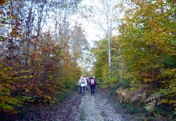 Randonnée autour de Moret-sur-Loing avec Générations13