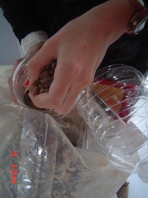 Jardinage en bouteille plastique